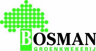 Jan Bosman